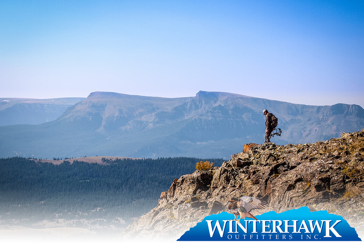 Winterhawk Outfitters Marketing Results